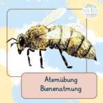 Die Bienenatmung - Brahmari