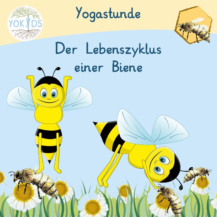Yogastunde mit der Biene