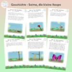 Geschichte - Selma, die kleine Raupe